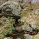 Segadelli springs and aquifers